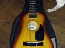 Learn-play-guitar
